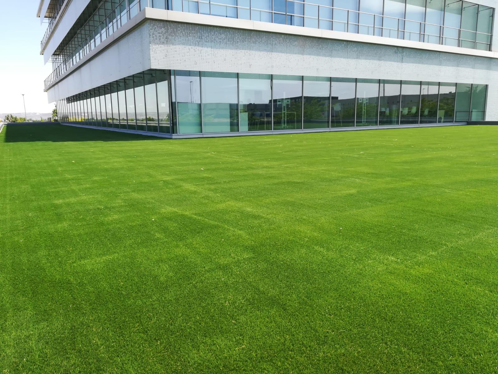 Oficinas En Plaza Una Terraza O Un Campo De Fútbol